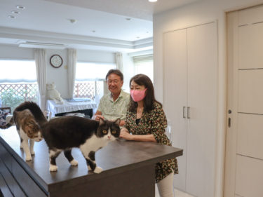 【京都市中京区】猫と暮らすホテルライクなマンションリノベーション